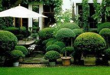 garden | balcony