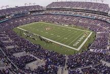 Baltimore Ravens / We love the Ravens!