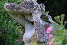 gardening / by Deborah Massa
