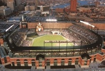 Baltimore Orioles / We root for our home team. Let's go O's!