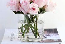 ↠ Fleurs