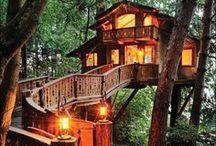 Acampamentos e casas na árvore.