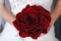 Wedding / by Hays