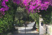 Bella Sicilia - für alle Sizilienfans / Sicily / Sicilia / Offene Pinnwand für alle Sizilienfans - pinnt hier eure Eindrücke von der Sonneninsel www.trip-tipp.com