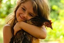 Animal Love  / Amazing creatures from around the world.