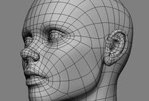 3D Wireframes, Anatomy and Topology / organic topology