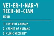 Amazing Veterinary Technicians / Vet technicians are amazing, taking care of your pets, amazing vet techs, the best veterinary technicians