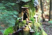 jardin de fée / jardin de fée. fairy garden.