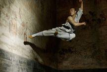 Martial Arts / Miscellaneous martial arts from Japan, China, …