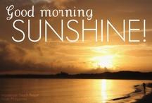 Good Morning Sunshine - a Tribute to my Kaspar dog / by Terri Weddle Troyan