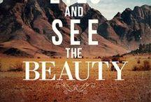 Beauty / by Terri Weddle Troyan
