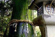 Landscapes (Japanese)
