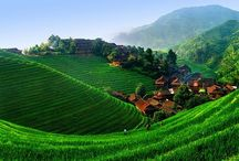 Landscapes (Chinese)