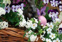 Season (Spring & Easter)