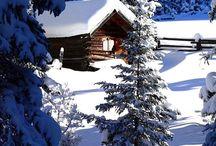 Season (Winter)