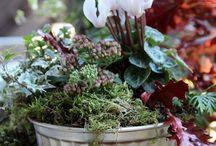 Ideen für den Garten -  DIY - Selbermachen / Anregungen für die Gartengestaltung, Gartendeko  Selbermachen  #Gartenideen #Selbermachen #Garten