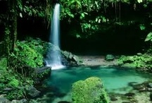 Dominica / 'Nature Isle of the Caribbean' - The Lush Caribbean island of Dominica in the  Lesser Antilles. / by itzcaribbean Travel