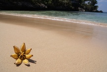 Dominican Republic - Caribbean islands / Gorgeous Dominican Republic! / by itzcaribbean Travel