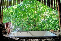 up in the trees / Stay in a tree house in the Caribbean / by itzcaribbean Travel