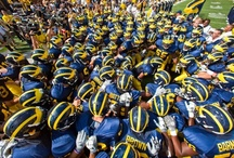 """All In for Michigan / """"Those who stay will be champions."""" ~ Bo Schembechler"""