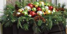 Weihnachtliches / Lass Dich weihnachtlich inspirieren, Ideen, Anregungen, DIY-Anleitungen, Rezepte. Schönes für die Weihnachtszeit zum Kaufen oder Selbermachen.  Sollte über die Produktvorstellung ein Kauf zustande kommen, erhalte ich von Amazon eine kleine Provision, die aber keinen Einfluss auf den Kaufpreis hat.