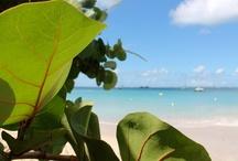 Saint-Martin / Sint Maarten / by itzcaribbean Travel