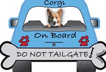 Fridge Magnets / I have been collecting Fridge Magnets for many years, with Corgis being top of my list (naturally) then Places Visited, Funny Magnets and Vintage (I have ones back from Expo held here in Brisbane 1988.. This is a ongoing hobby.. / by Lorraine Anderson