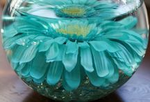 My Dining Room Table / Seasonal centerpieces for decorating my dining room table / by Ria Wicker