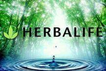 HerbaLIFE  / Healthy lifestyle! / by Ericka Karmann