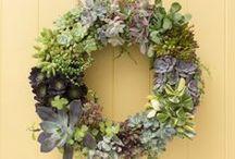 Blooms Crafts / by Sanna Cahn