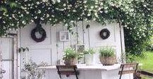 Weißer Garten - weiße Blumen - weiße Pflanzen / Weiß wirkt edel und fein, Weiß strahlt in der Dämmerung, Weiß ist einfach chic! Ausgesuchte Ideen zum Thema Garten in Weiß.