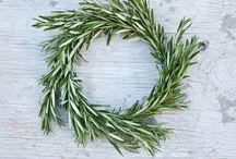 Wreaths & Co. / Wreaths