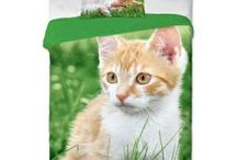 Animals - bedding collection | pościel ze zwierzakami / Animals - bed linen collection with animals photo