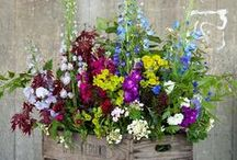 Centros de flores / Centros y ramos de flores. / Bouquet flowers.