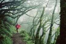 Running / Van hardlopen bouw je een top conditie op. Plus je billen, buik, benen & rug worden strakker als je het regelmaat oefent. Bepaal iedere keer een doel, afstand en of duur plus tempo goed blijven afwisselen met een frequentie van minimaal 3 loop trainingen per week.