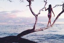 As Free As The Ocean.
