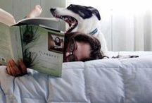 FMP/ Pet Parents / Consumer inspiration for a university project.