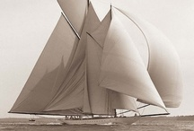 Toutes voiles dehors / by Marie Drifter