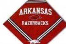 Arkansas Razorbacks Dog Sports Apparel