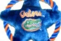 Florida Gators Dog Sports Apparel