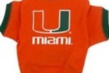 Miami Hurricanes Dog Sports Apparel