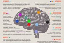 Psychology / Collection of psychology infographics