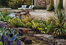 Home - Outdoors & Garden