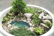 Minipuutarha ♥ Miniature garden