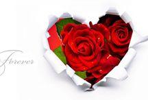Love Valentines / by 💙Elizabeth VH💙