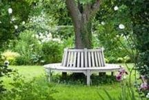 Garden & Nature / Inspiration from the garden and mother nature