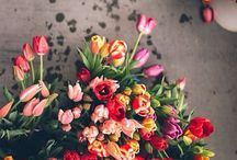In full bloom | Everything Floral / To blossom