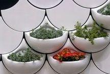 Tile Ideas