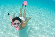 curiosity | UNDER THE SEA! / La bellezza di immergersi in un mare di #emozioni...