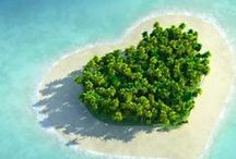 curiosity | WONDERFUL ISLAND! / Nessun uomo è un'isola.